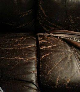 Couch-Peeling